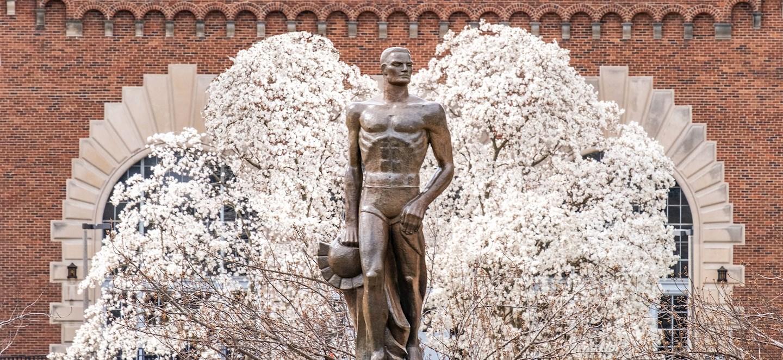 Spartan Statute in Spring